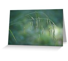 Blades in the grass Greeting Card