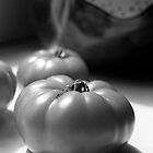 tomato &amp; jug by Janine Paris