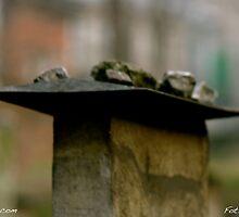 The Remu'h Cemetery. Kazimierz (Jewish Quarter). Brown Sugar Story. Views (201) favorited by (1) Shalom ! thank you ! dziękuję ! Toda raba zeh hachever sheli ! by © Andrzej Goszcz,M.D. Ph.D