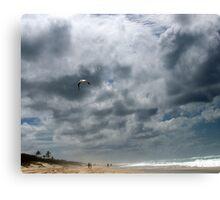 Gold Coast sea beach, Fly away - faraway ! Canvas Print
