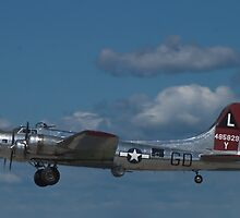 "B-17 Superfortress ""Yankee Lady"" by Henry Plumley"