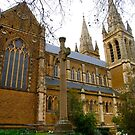St Peter's Cathedral, Adelaide by Ali Brown