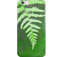 feathery fern leaf iPhone Case/Skin