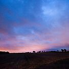 Peamount Early Morning by rorycobbe