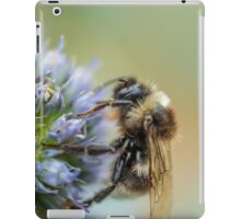 Bee on Sea Holly Flower iPad Case/Skin