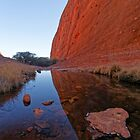 Walpa Gorge refection by David  Hibberd