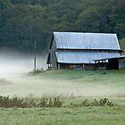 Early Morning Fog by Jane Best