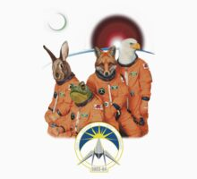 The Lylat Space Program Kids Clothes