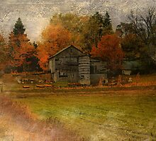 Autumn's Colors by Shelly Harris