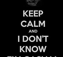 Keep Calm and I Don't Know... Fly Casual! by Amantine