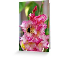 Pink Home For Mr. Bumble Greeting Card