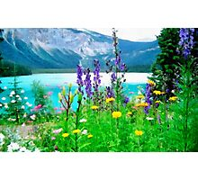 Wild flowers resting Photographic Print