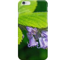 Hiding Bluebells iPhone Case/Skin