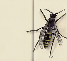 Yellow Jacket by dimarie