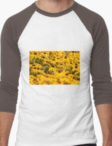 Daisy 5 Men's Baseball ¾ T-Shirt