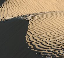 Rolling Dunes by David Kocherhans