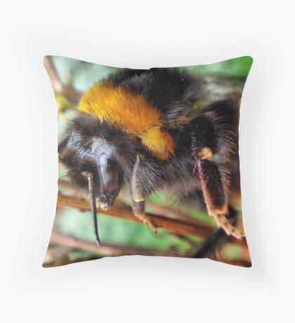 Buff Tailed Bumble Bee Throw Pillow