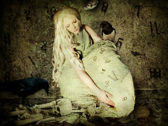 Cinders by Sybille Sterk