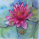 Water lily hide and seek by Beatrice Cloake