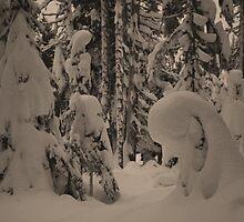 Dog Lake Snowshoeing 2 by twokonings