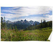Tatoosh Range from Paradise, Mt. Rainier Poster
