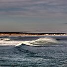 Surf is Up! by Monica M. Scanlan
