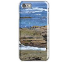 Sunset Cliffs California ~ Playground For Seagulls iPhone Case/Skin