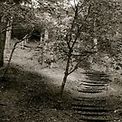 Stairs in the Country by Vanwraithen