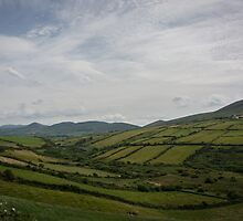 Ring of Kerry II by Katelyn Stephenson