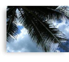 At Condado-Under the Palm Canvas Print