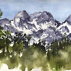 Mt Rainier peaks in Summer by Sally Griffin