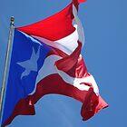 Wave Proud-Viva la Bandera by Swan Diaz