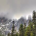 The North Cascades Highway. by melaniee