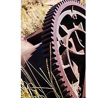 Relic Photographic Print