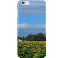 Sunflower Field on the Prairies iPhone Case/Skin