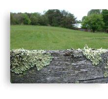 Good fences make good neighbors Canvas Print