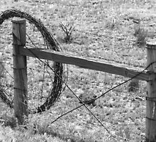Old Style Fencing by WolfPause