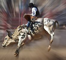 YEEHAA!!! by Linda Sparks