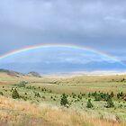Over the Rainbow by melaniee
