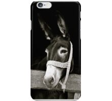 Hungarian Donkey iPhone Case/Skin