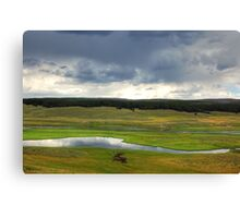 Yellowstone Valley Canvas Print