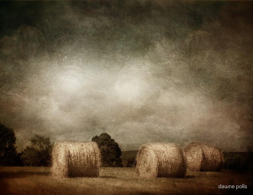 hay rolls on a sunday afternoon by dawne polis