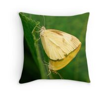 two butterflies,one story Throw Pillow