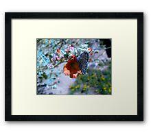 Butterfly ~ Marine Blue Framed Print
