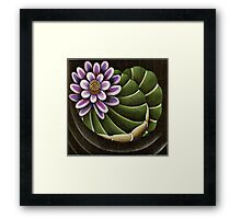 Lotus Lilly Floating in Pond Framed Print
