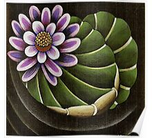 Lotus Lilly Floating in Pond Poster