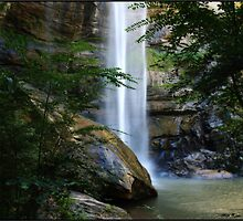 Toccoa Falls by Mattie Bryant