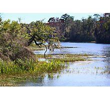 Florida's Rainbow River Photographic Print