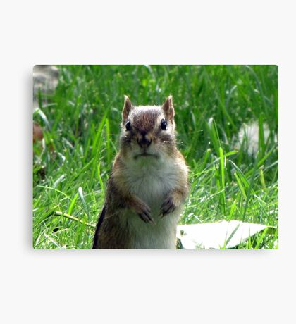 No Peanuts?!!! Canvas Print