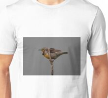 Western Meadowlark Unisex T-Shirt